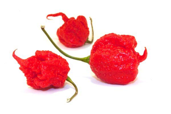Carolina Reaper Chilis